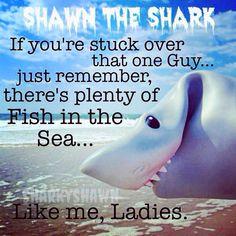 #sharkyshawn
