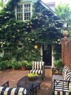 princess anne county: climbing hydrangea black and white furniture Outdoor Rooms, Outdoor Gardens, Outdoor Living, Backyard Garden Design, Backyard Landscaping, Backyard House, Landscaping Ideas, Garden Cottage, Home And Garden