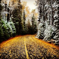 A really nice photo of a road in Northern Ontario