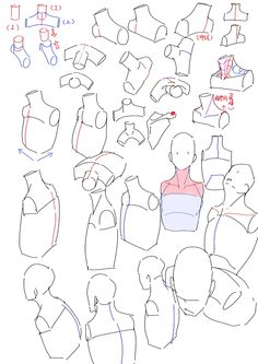 and shoulders neck and shouldersneck and shoulders Body Reference Drawing, Drawing Reference Poses, Drawing Poses, Neck Drawing, Body Drawing Tutorial, Sketches Tutorial, Body Anatomy, Anatomy Art, Art Sketches