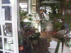 The Gardener's Cottage - Asheville, NC- A magical shop! Garden Shop, Garden Club, Nc Mountains, Botanical Decor, Flower Nursery, Nature Activities, Through The Window, One Light, Outdoor Living