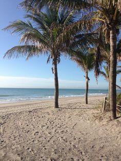 Morning at Dania Beach, Florida
