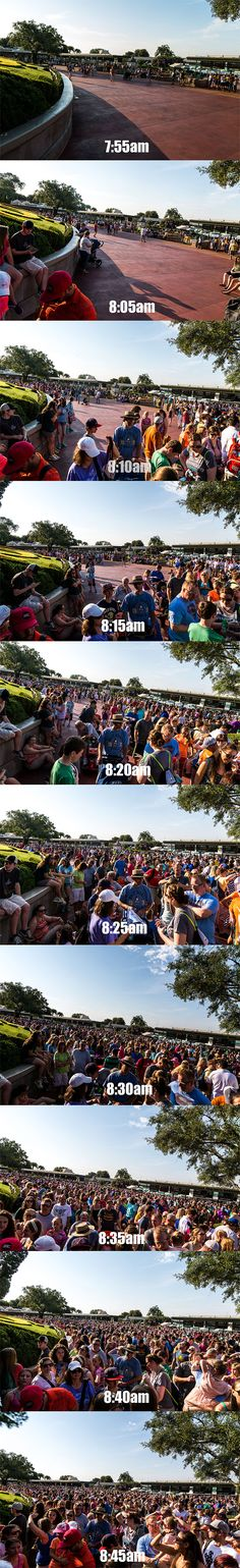 Why get to Disney World first thing in the morning?! from easyWDW