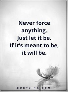 Life Lessons Never force anything. Just let it be. If it's meant to be, it will be.