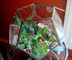 Geometric terrarium with mini rabbits.