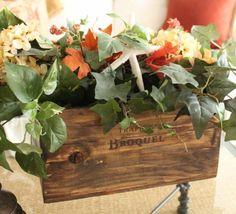 jardin miniature en caisse à vin avec lierre et étoile de mer