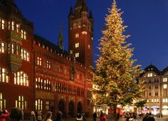The Basel Christmas market at Barfüsserplatz and Münsterplatz is considered to be one of the prettiest and largest in Switzerland. Christmas In Europe, Best Christmas Markets, Christmas Travel, Christmas Traditions, European House, Christmas Scenes, Basel, Wonderful Places, Big Ben