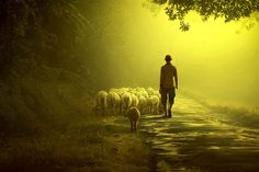 Photograph Into The Light by Ipoenk Graphic on 500px