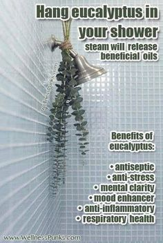 Great tip! Hang Eucalyptus in your shower. The steam releases many beneficial oils and it smells amazing too! healthy food, healthy lifestyle #healthy