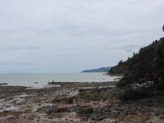 Coromandel peninsula 4