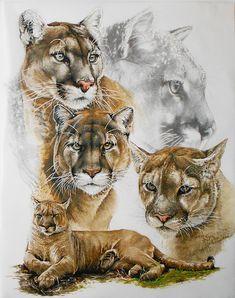 Cougar Painting - Fierce by Barbara Keith