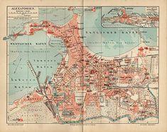Sebastopol Geese, Ireland Map, County Map, Antique Maps, Vintage Flowers, Vintage World Maps, Antiques, Illustration