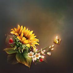 Rose Flower Wallpaper, Sunflower Wallpaper, Abstract Iphone Wallpaper, Framed Wallpaper, Sunflower Pictures, Sunflower Art, Beautiful Flower Quotes, Beautiful Flowers, Flower Canvas