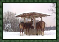 covered horse hay feeders diy