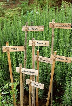 Plant ID stakes made with lengths of bamboo, wood shims and twine