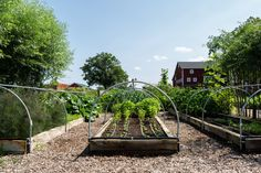 10 Edible Garden Ideas to Steal from Michigan's Favorite Foodie Farmers - Gardenista