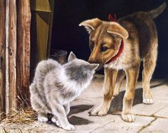 Fine art with cats & dogs. Paintings with friendly cats and dogs. Magical Paintings, Dog Paintings, Animals Images, Animal Pictures, Cute Animals, Arte Country, Cat Mouse, Cat Dog, Painting Wallpaper