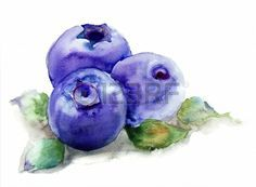 Blueberries with leaves, watercolor illustration