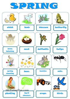 esl spring vocabulary - Google Search