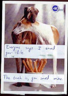 Classic Secret from PostSecret.com 1/23/2016