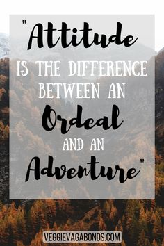 With adventures currently put on hold, these inspirational quotes from some of the greatest wordsmiths and explorers of all time will scratch those itchy feet, whilst igniting your passion to plan for your next trip. Adventure Quotes Outdoor, Adventure Quotes Wanderlust, Travel Advice, Travel Quotes, Travel Tips, Animal Jokes, Quotations, Laughter, Funny Quotes