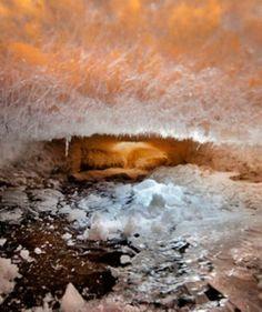 Un mondo sommerso sotto il fiume ghiacciato - CMI