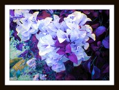 Nature photography bougainvillea flowers digitally by LadyHonsa, multiple sizes starting at $17.00