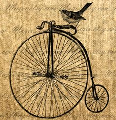 Sparrow Bird on a Vintage Bicycle Digital Image, Download and Print, Great For Image Transfer on Pillows, Tea Towels and more - Style. 282