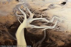 The river tree: Iceland's natural beauty pictured from the air looks like a work of art    Read more: http://www.dailymail.co.uk/sciencetech/article-2104094/The-River-Tree-Amazing-aerial-pictures-Iceland-s-amazing-natural-beauty.html#ixzz1n4QGPN66