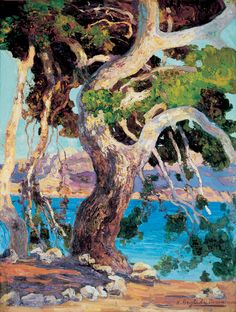 'Pi de Formentor' -  Hermen Anglada Camarasa  (1871–1959)