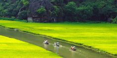 The Trang An Tourism Complex in the northern province of Ninh Binh was officially included in the world heritage list on June 23 by the UNESCO's World Heritage Committee.