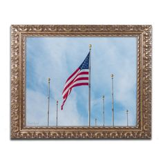Red White & Blue by David Ayash Framed Photographic Print