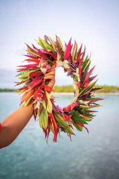 Discover my article with all my advice, good plans, budget, to go to Polynesia! Wedding Ceremony Decorations, Wedding Aisles, Wedding Backdrops, Wedding Ceremonies, Ceremony Backdrop, Wedding Reception, Tahitian Costumes, Amazing Nature Photos, Hula Dancers