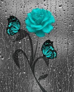 Teal Gray Rose/Butterfly Decorative Bathroom by LittlePiePhotoArt