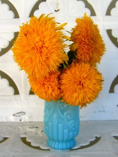 pretty orange & aqua.