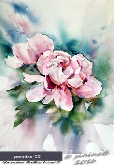 peonies II / Watercolour 30x40cm Arches CP © janinaB. 2016
