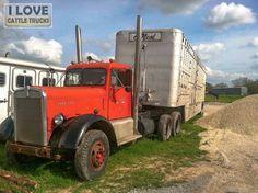 Ol' Trucker Cattle Livestock Haulin'