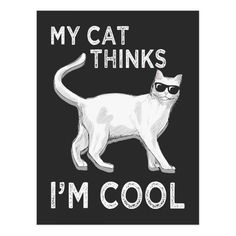 Crazy Cat Lady, Crazy Cats, Im Going Crazy, Cat Dad, Good Jokes, Cat Memes, Vintage Graphic, Retro Vintage, Cats And Kittens