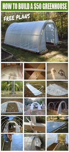 Covered Greenhouse Garden With Video Tutorial | The WHOot