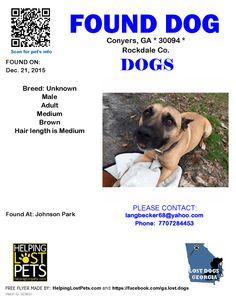 Found Dog - Unknown - Conyers, GA, United States