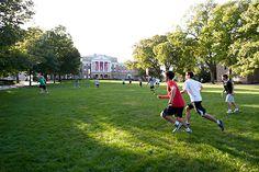 Play Frisbee on Bascom Hill