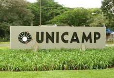 88,2% dos aprovados em Medicina na Unicamp são da escola pública | Infotau Vale