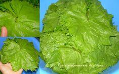 Αμπελόφυλλα (κληματόφυλλα): συντήρηση στην κατάψυξη - cretangastronomy.gr Lettuce, Vegetables, Anonymous, Food, Essen, Vegetable Recipes, Meals, Yemek, Salads