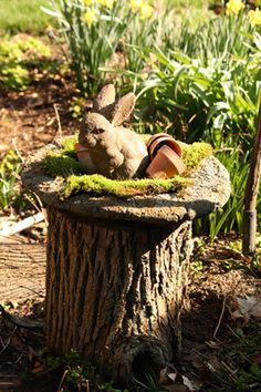 Beautiful Tree Stump Planter Ideas for the Garden - All For Herbs And Plants Tree Stump Decor, Tree Stump Planter, Ideas For Tree Stumps, Wood Stumps, Tree Trunks, Garden Trees, Fairies Garden, Gardening For Beginners, Yard Art