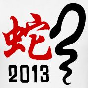 Year of The Snake 2013 T-Shirt Design