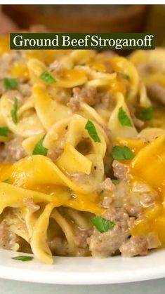 Easy Pasta Recipes, Meat Recipes, Appetizer Recipes, Crockpot Recipes, Dinner Recipes, Cooking Recipes, Healthy Recipes, Beef Dishes, Pasta Dishes