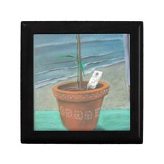 Pot in the Window Gift Boxes by Grayson Art