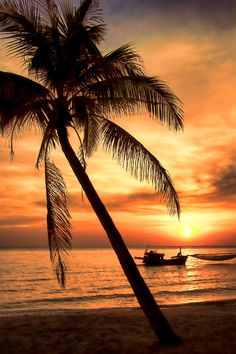 Phu Quoc Sunset, #Vietnam  Looking forward to Phu Quoc with the family, a little paradise island off the coast of South Vietnam.