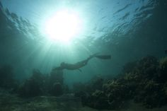 Freediving in Amed Bali. Photo by Nobert Wu.