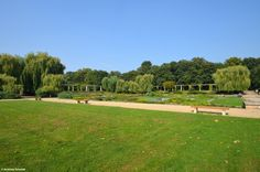 Enjoy the silence and romantic atmosphere in Palmengarten.